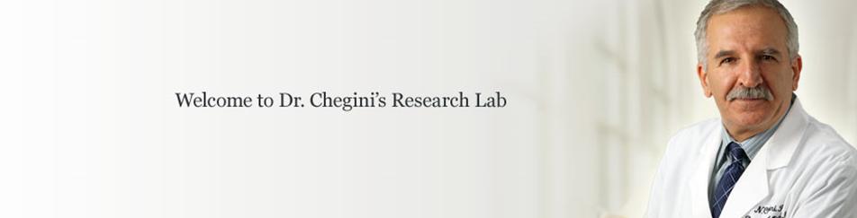 Nasser Chegini2