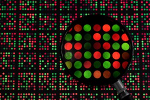 DNA_microarray_1[1]
